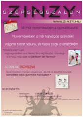 Novemberi akció - ZINZY